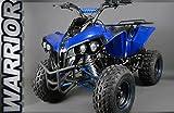 XXL 125cc Quad Warrior   Kinderquad Kinderfahrzeug Atv Midi (Schwarz)