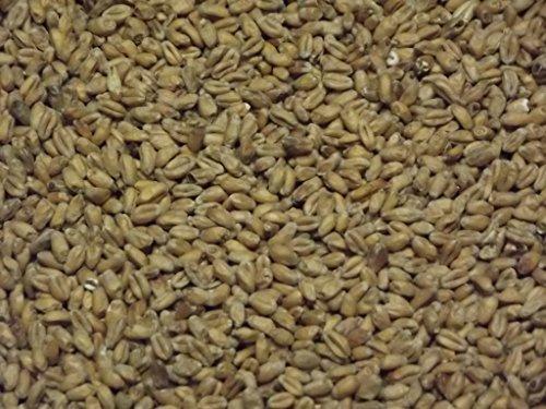 Ireks Öko Weizenmalz 1kg, ungeschrotet - Farbe: 3-5 EBC