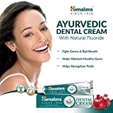 Himalaya Ayurvedic Dental Cream, 1er Pack (1 x 100 g) - 2