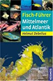 Fisch-Führer Mittelmeer und Atlantik - Helmut Debelius