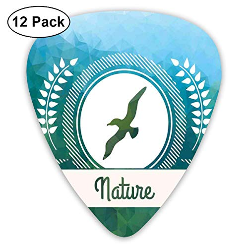 Celluloid Guitar Picks - 12 Pack,Abstract Art Colorful Designs,Polygonal Nature Gradient Effect Blue And Green Tiles With Seagull Motif,For Bass Electric & Acoustic Guitars.