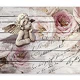 murando Papier peint intissé 400x280 cm Décoration Murale XXL Poster Tableaux Muraux Tapisserie Photo Trompe l'oeil ange Rose f-A-0313-a-a