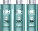 Schwarzkopf Men Power Action 3 Anti-Schuppen Shampoo + Fräser mit Pellicules 250 ml - 3er Pack (3 x 250 ml)