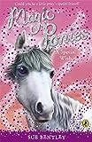Magic Ponies: A Special Wish