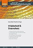 IT-Sicherheit & Datenschutz: HMD - Praxis der Wirtschaftsinformatik 281