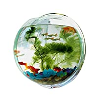 24cm Wall Hanger Organizer Acrylic Hanging Fish Bowl Home Decoration Aquariums Flowerpot Decor Tank Flower Vase