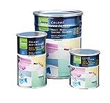 Vernice all'acqua per pavimenti mobili e sanitari GAPI COLORI PER INTERNI vari colori - ML.250, BIANCO