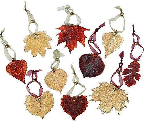Leaf Ornaments-Set von zehn, irisierend und Gold vergoldet ECHT Blätter. -