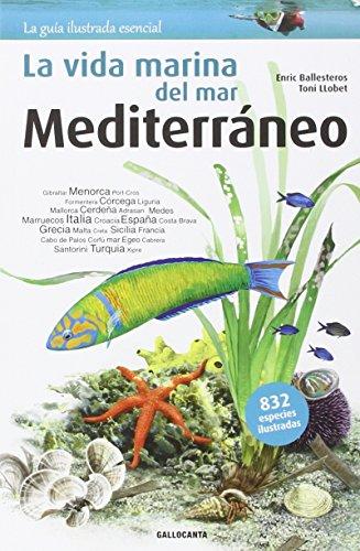 La vida marina del mar Mediterráneo