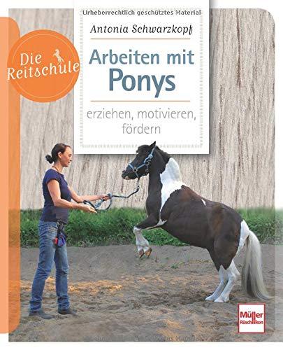 Arbeiten mit Ponys: erziehen, motivieren, fördern (Die Reitschule)