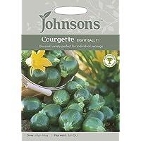 Portal Cool 2: Johnsons semillas de calabacín de ocho bolas de semillas F1