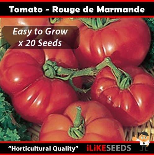 Tomate « Rouge De Marmande » HÉRITAGE 20 graines Jardin des plantes potagères minimum