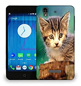 Snoogg Poor Kitty Printed Protective Phone Back Case Cover For Micromax Yu Yureka