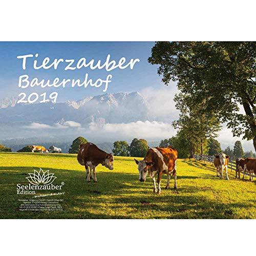 Tierzauber Bauernhof · DIN A4 · Premium Kalender 2019 · Landleben · Schaf · Hunde · Katze · Kuh · Landwirtschaft · Hühner · Pony · Pferd · Ziege · Bauernhof · Natur · Tiere · Edition Seelenzauber - Grußkarten Kuh