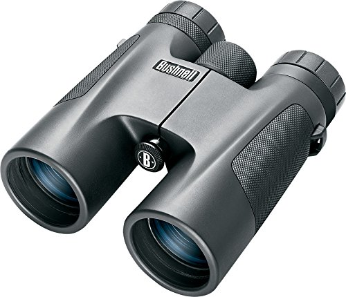 Bushnell Fernglas Powerview 2008, Roof Prism, Mc, grau, 10X42, 141042