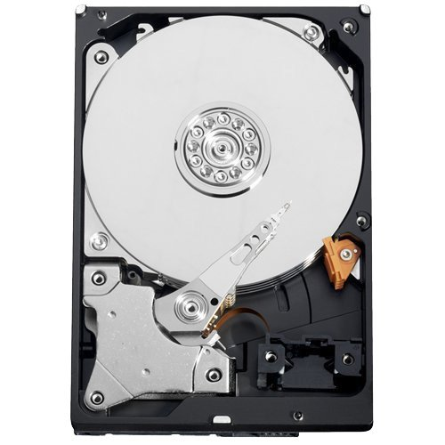 HD1TB–Festplatte 1TB SATA 6Gb/s Modell WD10EURX (1 Sata-modell Tb)