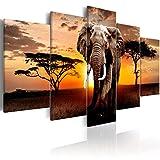 murando - Bilder Elefante 200x100 cm Vlies Leinwandbild 5 TLG Kunstdruck modern Wandbilder XXL Wanddekoration Design Wand Bild - Landschaft Natur g-C-0054-b-n