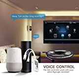 Magic Mini RGB wifi Controller für LED Strip/Streifen Kompatibel mit Alexa, Google Home, IFTTT, IR Fernbedienung Steuerung, 16 Mio Farben, 20 Dynamische Modi - 2