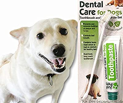 Dental Care For Dogs Toothpaste 100g and Toothbrush Dental Kit No Rinsing by just pets