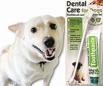 Just Pets Dental Care Ensemble brosse à dents et dentifrice pour chiens