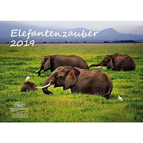 Elefante mágica · DIN A3· Premium Calendario 2019· elefante · África · Animales · Wildnis · Natural · Set de regalo con 1tarjeta de felicitación y 1Tarjeta de Navidad (· Edition Alma mágica