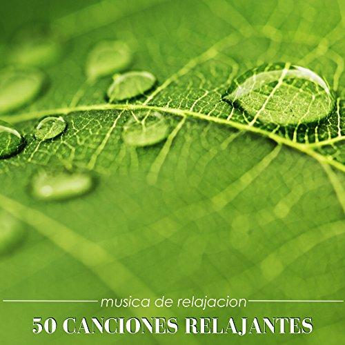 50 Canciones Relajantes - 50 Musica de Relajacion para Dormir e Meditar Profundamente, Musica para Paz Interior para Aprender Como Dormir Bien
