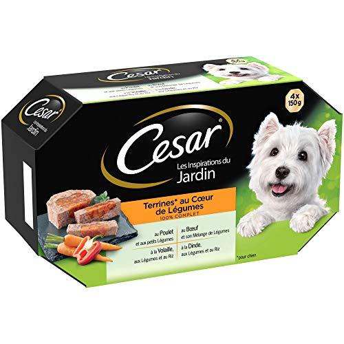 CESAR Les Inspirations du Jardin - Barquettes en terrine pour chien adulte, cœur de légumes, 24 barquettes de 150g