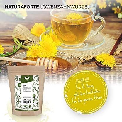 NaturaForte-Lwenzahnwurzel-Tee-geschnitten-500g-Lwenzahn-Tee-Lose-Arzneimittel-Qualitt-Traditioneller-Krutertee-100-Natrlich-ohne-Zustze-Getrocknet-Laborgeprft