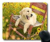 Gaming-Mauspad, lustiger schwarzer Labrador-Hund, hd p, Präzisionsnaht, strapazierfähiges Mauspad