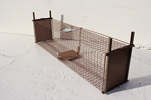 TRAPGALLIER piège Cage Capture 2 entrée 100x25x25 Rats, Lapins, Chats errants rongeurs.