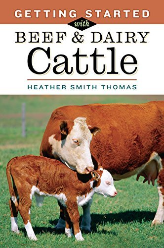 By Heather Smith Thomas Getting Started with Beef and Dairy Cattle