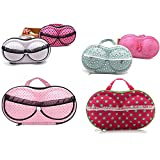 Jeval Portable Zipper Cover Storage Bag Box Protect Travel Underwear Bra Case Bag/Large Bra Bag Travel Organizer...