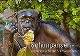 Schimpansen - unsere nächsten Verwandten (Wandkalender 2018 DIN A3 quer): Porträts von Schimpansen - unseren nächsten Verwandten (Monatskalender, 14 ... [Kalender] [Apr 01, 2017] Brodde, Ulrich
