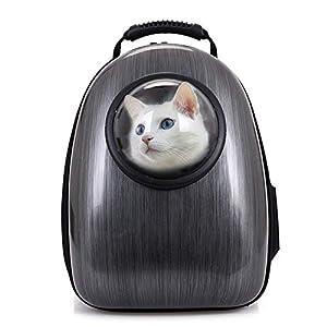 51lQb1W9AnL. SS300  - Mochilas para Gatos Capsula Aerolínea Aprobada Mochila para Mascotas Perros Portátil Respirable Resistente a los Arañazos a Prueba de para Transporte Viajar Caminar Negro