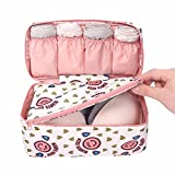 #6: AEXiVE Undergarments and innerwear Storage Bag Travel cosmetic pouch for women, Toiletry Bag Organiser