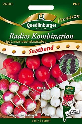 Quedlinburger 292903 Radies Kombi Saxa & Albena (Radiessamen)