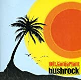Songtexte von 10 Ft. Ganja Plant - Bush Rock