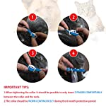 u-picks dog flea collar,6 months flea and tick control protection for dogs cats,adjustable size&waterproof,stop pest bites&itching(blue) U-picks Dog Flea Collar,6 Months Flea and Tick Control Protection for Dogs Cats,Adjustable Size&Waterproof,Stop Pest Bites&Itching(Blue) 51lR0UIZv7L