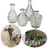 LS-LebenStil 4X Deko-Flaschen Glasvase 20cm Set Blumenvase Tisch-Vase Väschen