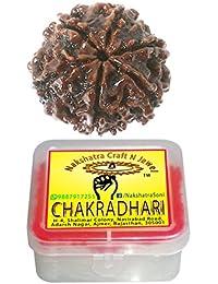 CHAKRADHARI 100% Original 6 Face NEPAL RUDRAKSHA Loose Bead Lab Certified Mantra Siddha Auspicious Round Bead for Unisex Wearing