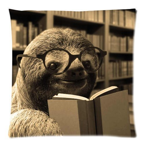 funny-sloth-reading-books-throw-pillow-case-decor-cushion-cover-square-18x18-inch-pillowcase