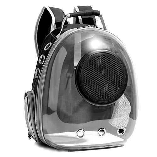 DYYTR Tragbare Katze Tasche, Hund Aus Raum Transparent Tasche, Haustier Rucksack, Geeignet Für Welpen Und Kätzchen Zu Reisen, Einfach Zu Tragen,Black Black Transparent Tasche