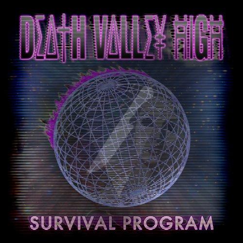 survival-program-vinyl