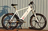 XTC SPEED MOUNTAINBIKE ELEKTRO FAHRRAD 25-40 Km/h PEDELEC RAD SCOOTER E-BIKE