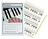 KEYNOTES Piano Stickers for 49, 54, or 61-KEY Music Keyboard + Online Lessons