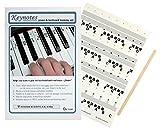 Piano Stickers?Keynotes 61-key Clavier Musique Notes avec aide d\'apprentissage en ligne