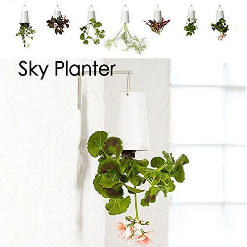 Bluelover Maison Jardin Decor Ciel Planteur Suspendus Pot De Fleur À L'Envers Vers Le Bas De Cache-Pot