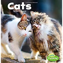 Cats (Our Pets)