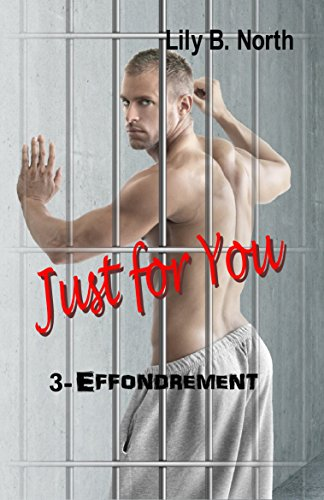 Just for You (Tome 3) - Effondrement par [North, Lily B.]