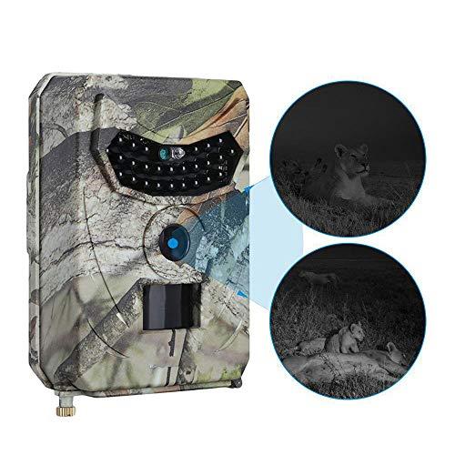 TLgf Spielkamera für Wildlife Jagdüberwachung, mit Motion Activated Night Vision IR LEDssdr.12 Monate Bereitschaftsdienst, eingebautes Mikrofon und Lautsprecher (Stativ Hirsche)